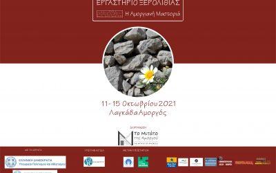 Εργαστήριο Ξερολιθιάς «Η Αμοργιανή Μαστοριά» 11 – 15 Οκτωβρίου 2021